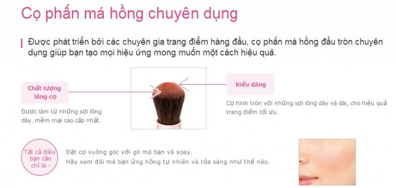 co-phan-ma-hong-chuyen-dung