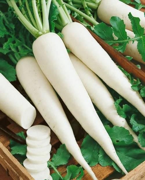 Ngoài việc giúp món ăn thêm đậm đà ngon ngọt. Củ cải trắng còn giúp các Eva đánh bay những vết thâm chỉ trong1 tuần.