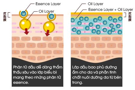 tinh chat fracora essence oil serum